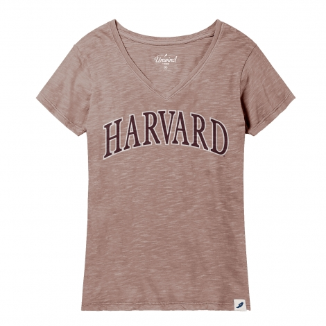 Women's Harvard Slub V-Neck Tee