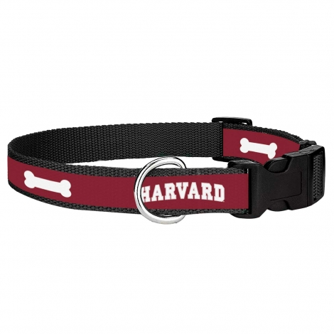 Harvard Dog Collar