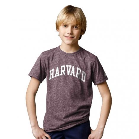 Harvard Youth Victory Falls Tri-Blend Tee