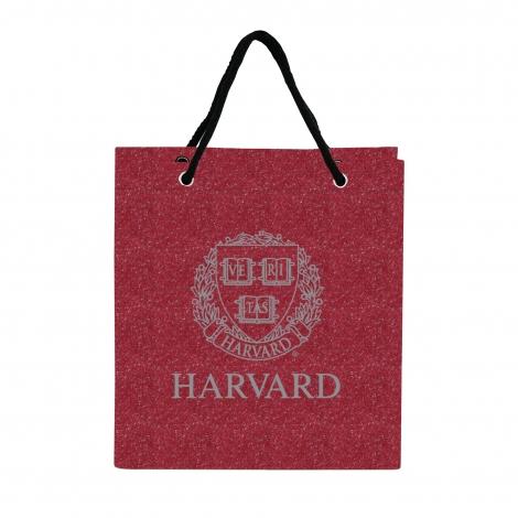 Harvard Glitter Gift Bag