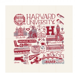 Julia Gash Harvard Kitchen Towel