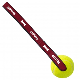 Harvard Tennis Ball Dog Toy