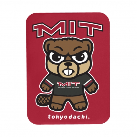 Tokyodachi MIT Rectangular Magnet