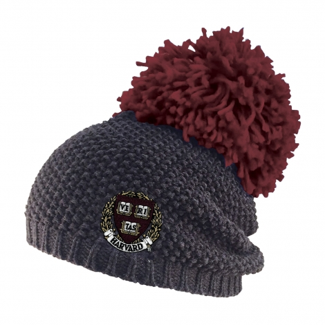 Harvard Rally Pom Knit Beanie