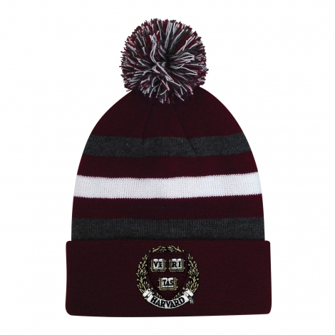Youth Harvard Halftime Knit With Pom