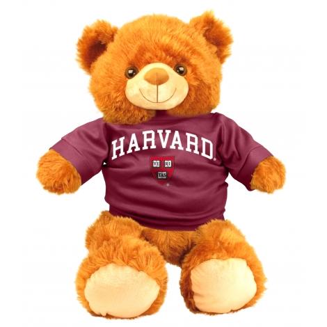 Harvard Bear