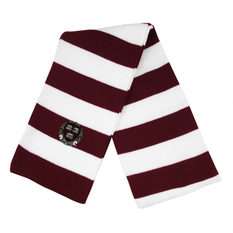 Harvard Rugby Stripe Knit Scarf