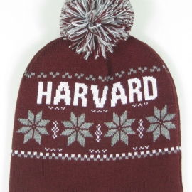 Harvard Old School Alpine Beanie With Pom