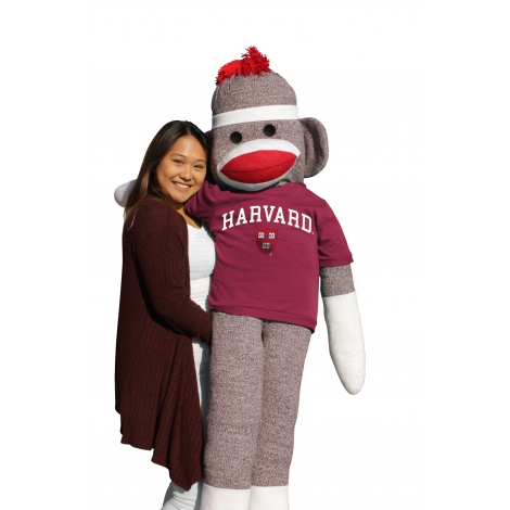 6 Foot Sock Monkey