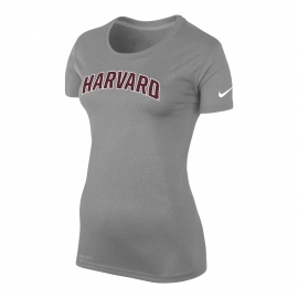 Nike Women's Dri-Fit Legend Tee