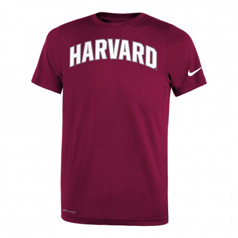 Harvard Nike Youth Dri-Fit Legend Training Tee