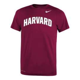 Harvard Nike Youth Dri-Fit Legend Training Tee