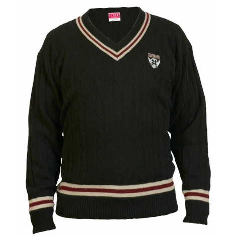 Harvard Business School V-Neck Lambswool Sweater
