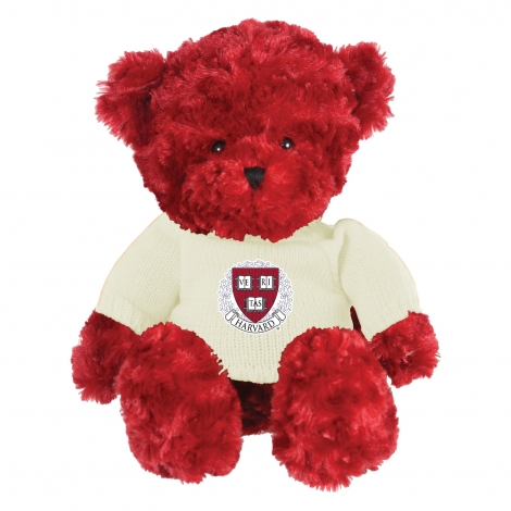 Harvard Easton the Bear with Sweater