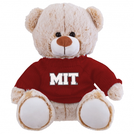 Maxwell the Bear with MIT Sweater