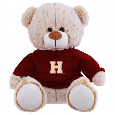 Landon the Bear with Harvard Sweater