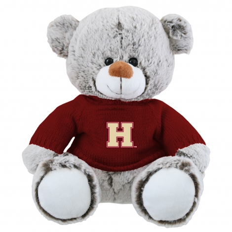 Harrison the Bear with Harvard Sweater
