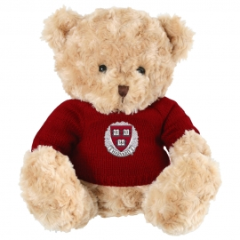 Harvard Landon the Bear with Sweater