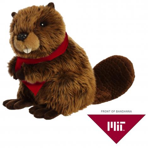 Aurora Miyoni TIM The Beaver With Custom Bandana