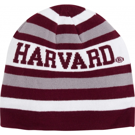 Harvard Fleece Lined Striped Beanie