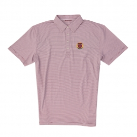 Harvard Men's Champions Stripe Polo