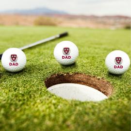 Harvard Dad TaylorMade Set of 3 Golf Balls