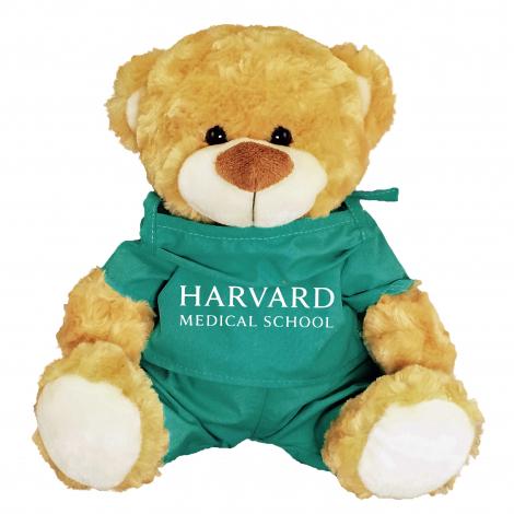 Harvard Fred Bear in Medical Scrubs