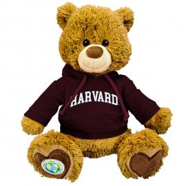 Harvard Polly the Eco-friendly Bear