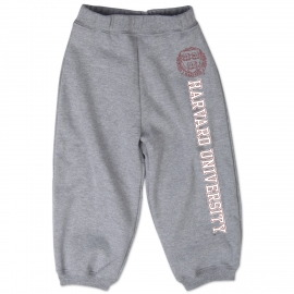 Harvard Grey Toddler Sweatpants