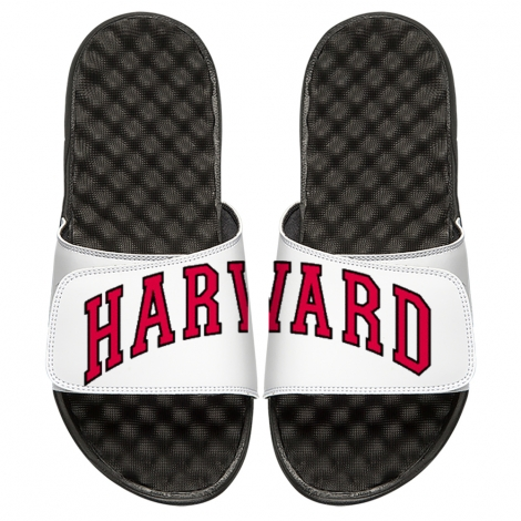 ISlide Split Arched Harvard Sandals