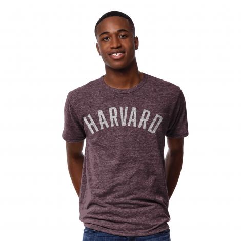Men's Harvard Victory Falls Tee