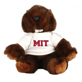 MIT Beaver