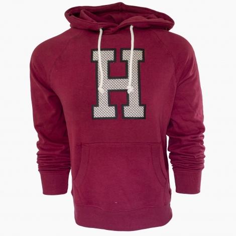 Harvard College Hood