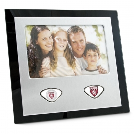 Harvard Medical School Picture Frame with Custom Medallions