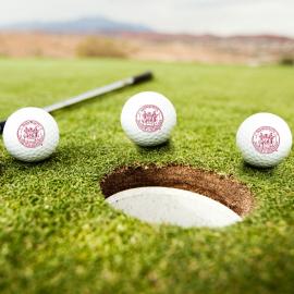 MIT Seal TaylorMade Set of 3 Golf Balls