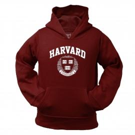 Harvard Toddler Pullover Hoodie