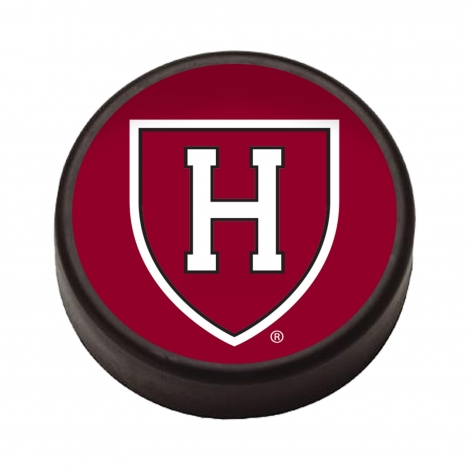 Harvard Foam Hockey Puck