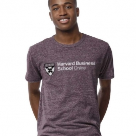 Harvard Business School Online Victory Falls Tee