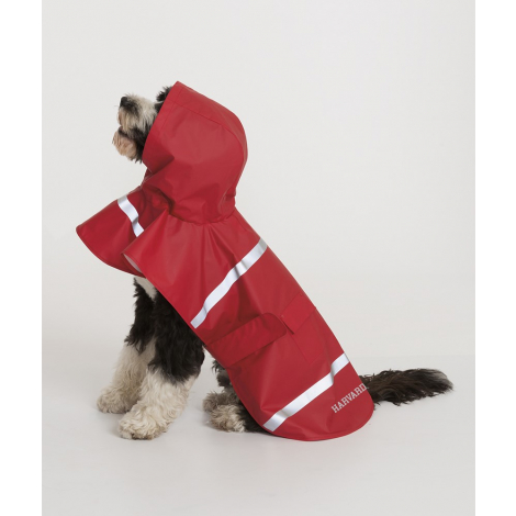 Harvard New Englander Doggie Rain Jacket