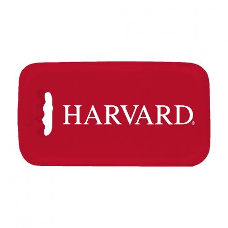 Bleacher Crimson Harvard Stadium Seat