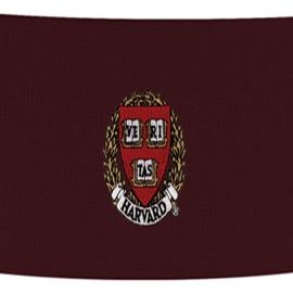 Harvard Maroon Knit Veritas Headband