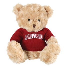 Elliot Harvard Bear w/ Harvard Sweater