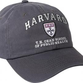 T. H. Chan Granite Hat