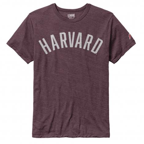 Harvard Men's Victory Falls Tee