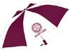 Harvard Folding Umbrella