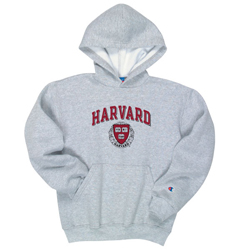 Youth Grey Harvard Hooded Sweatshirt