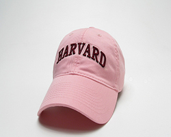 Women's Fit Pink Flamingo Harvard Hat