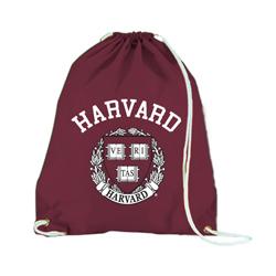 Nylon Harvard Maroon Back Sack