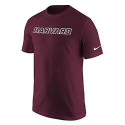 Nike Core Maroon T Shirt
