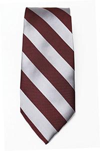100% Silk MIT Freshman Tie